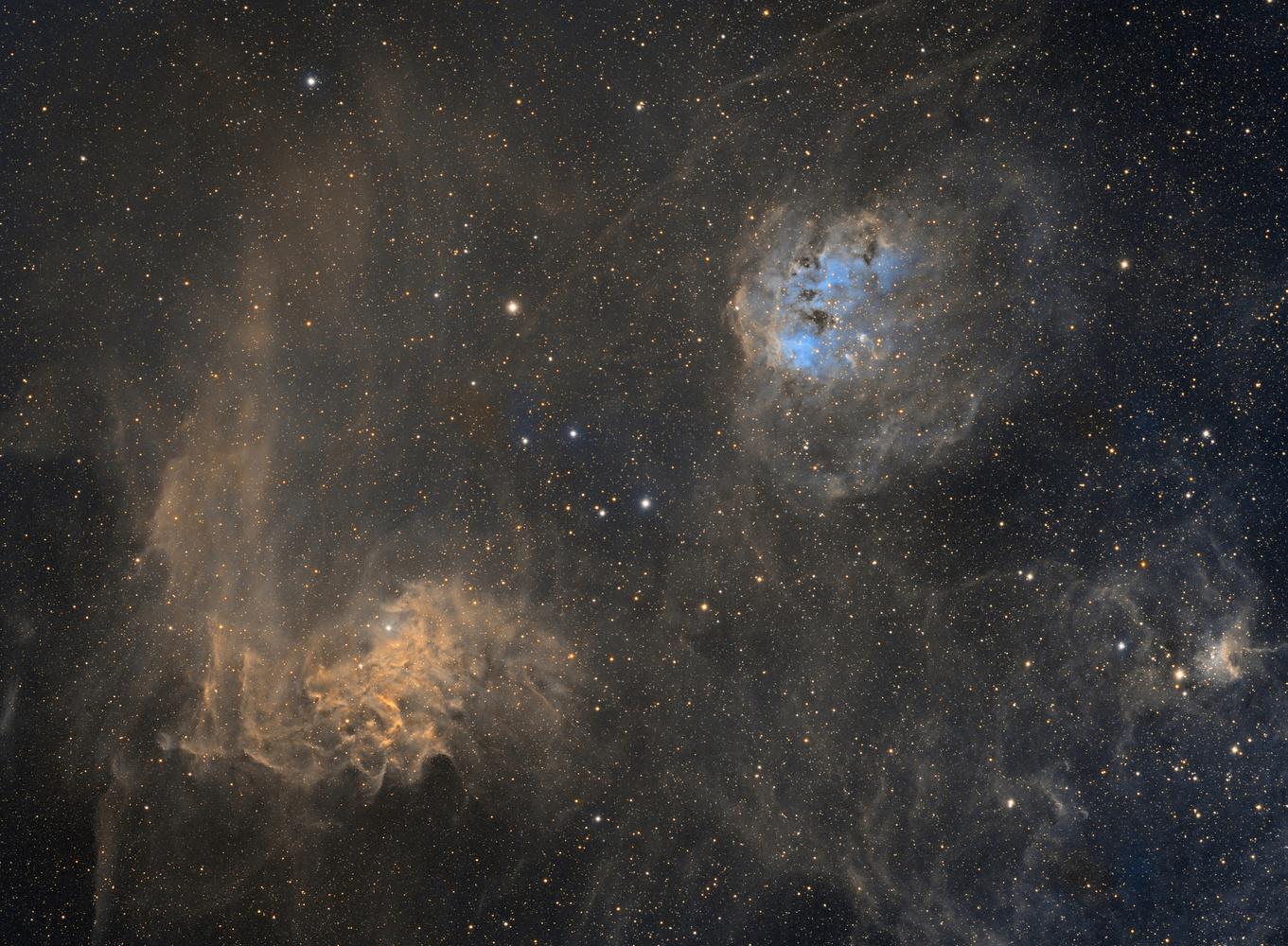 Flaming Star and Tadpole Nebulae by Josh Borup