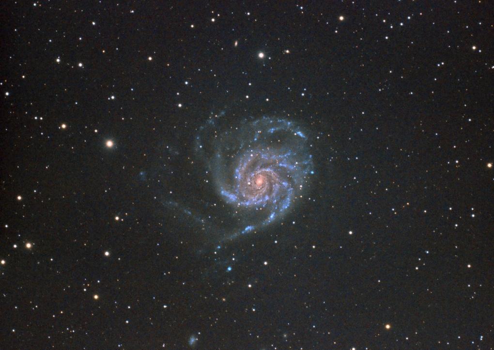 Pinwheel Galaxy from Sedona, AZ by Josh Borup