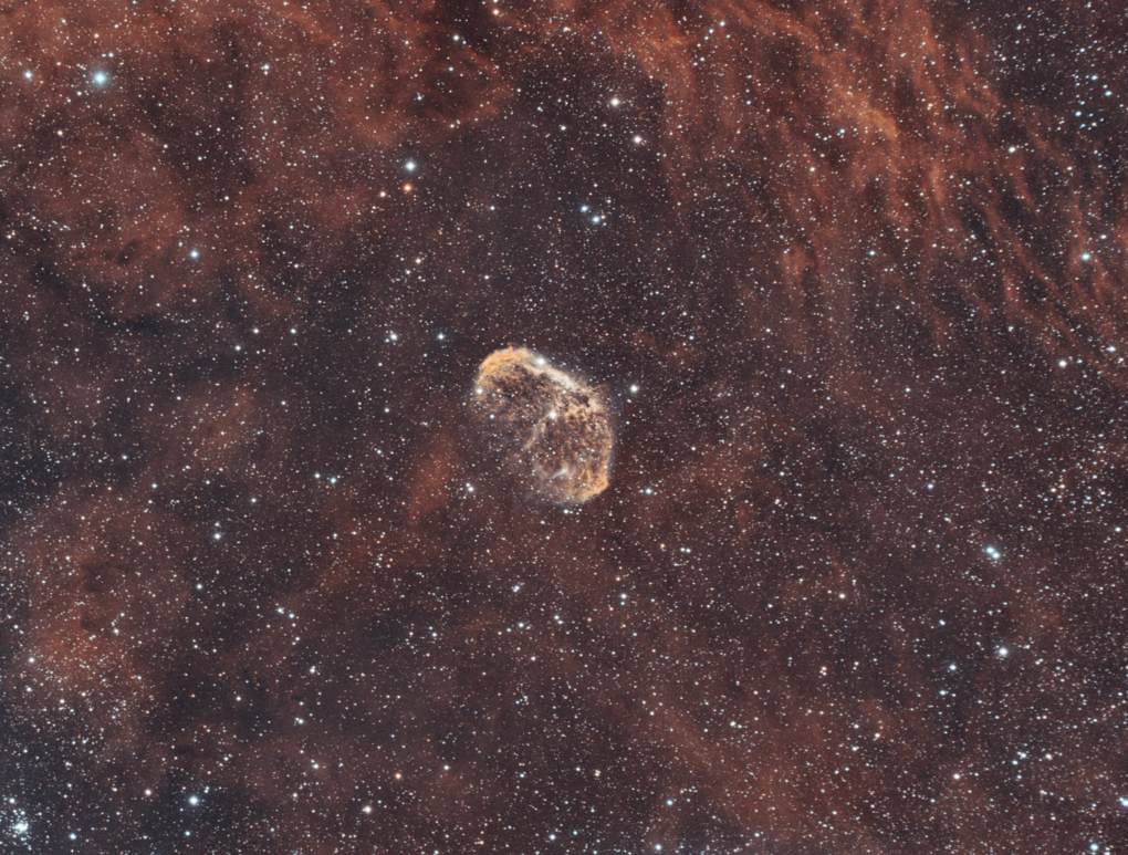 Crescent Nebula In Narrowband by Josh Borup