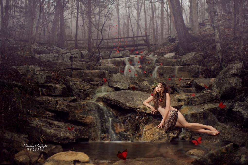 Evergreen by Amanda Campbell