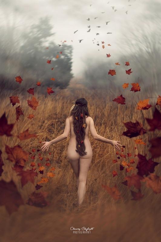 Autumn by Amanda Campbell