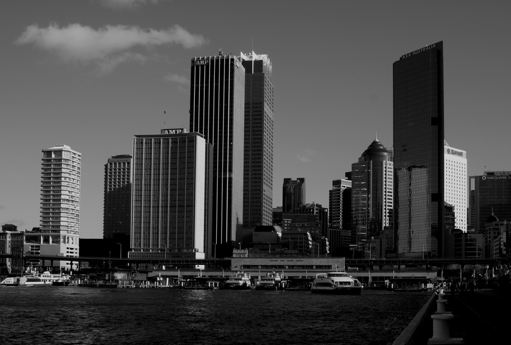 Sydney Skyline by Steve Silk