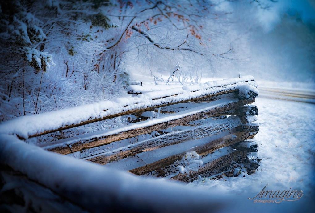 Winter in Murfreesboro by Deanie Charles Wittkamp