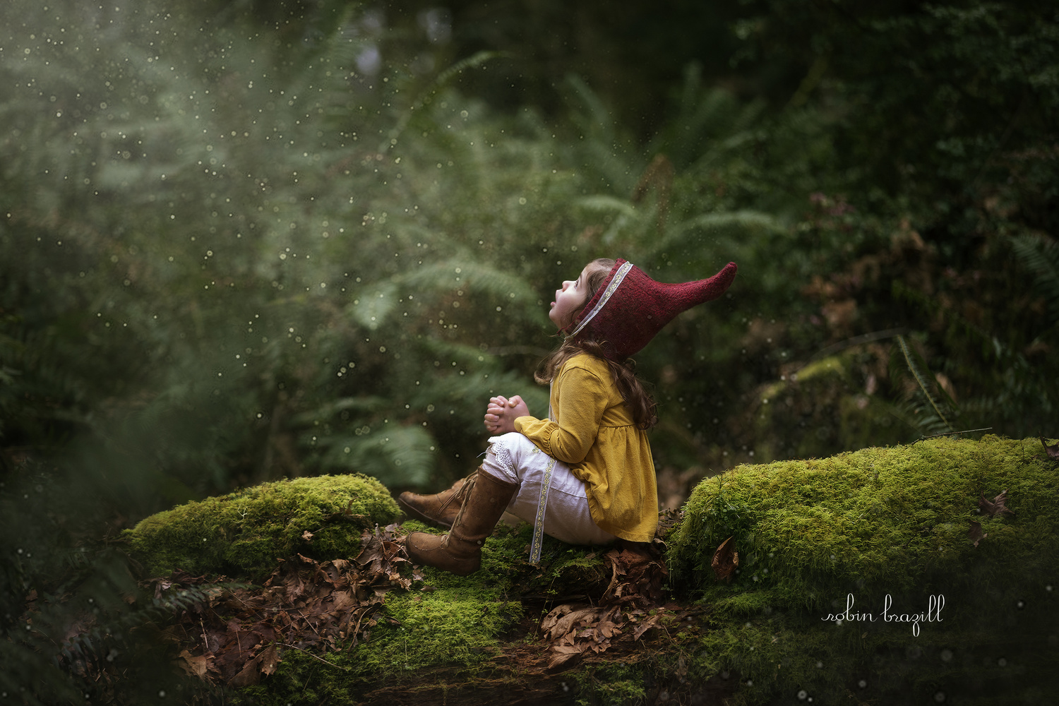 Little Gnome in Fairy Dust by Robin Brazill