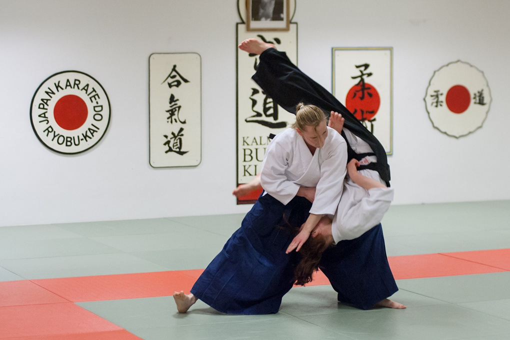 Aikido throw by Peter Nilsson