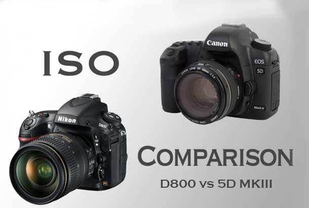 [Gear] Nikon D800 and Canon 5D MKIII ISO Samples