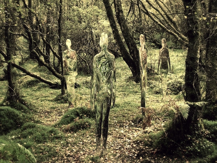[Pics] Mysterious Glass People Found in Scotland Forest
