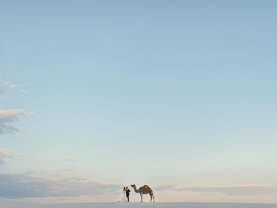Bride, Groom and.... Camel?