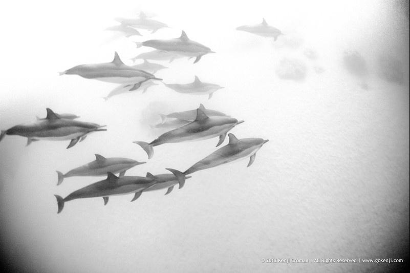 The Wave Photography of Kenji Croman