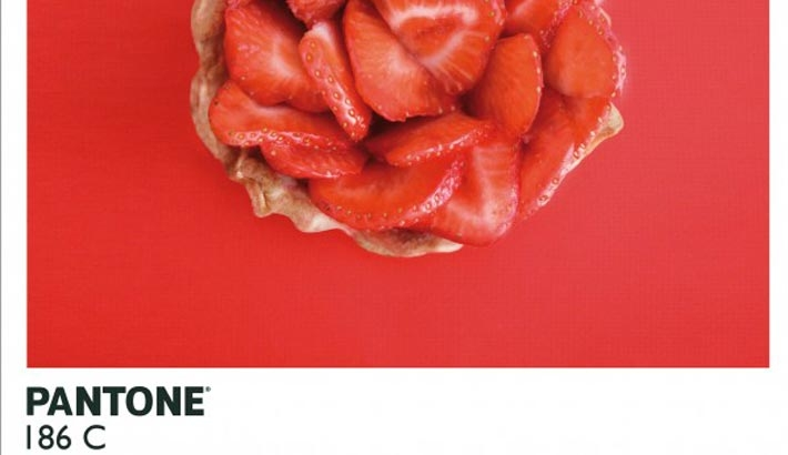 Pantone Food Photography