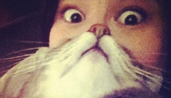 Cat Beards: The Latest Funny Photo Trend Involving Cats