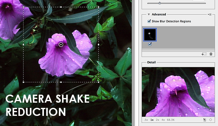 What is Camera Shake Reduction and How Does it Work?