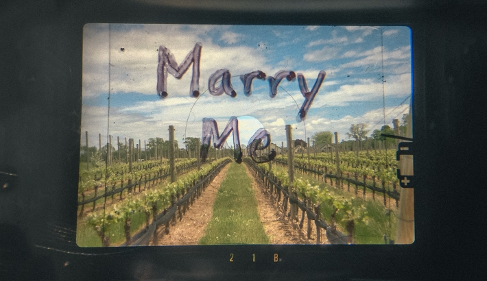 My Unique Proposal Through a Lens
