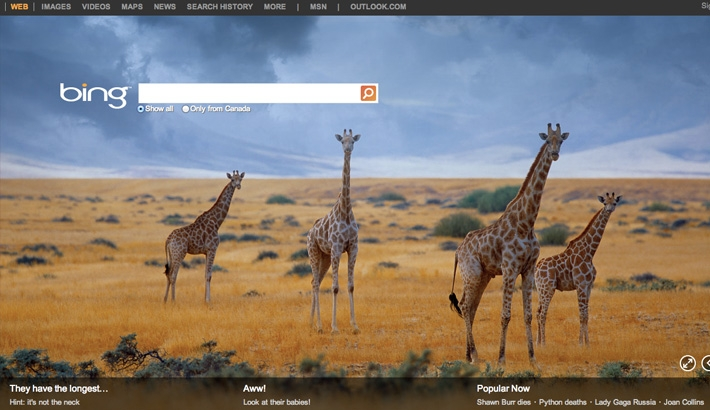 Bing and 500px Partner Up and Showcase User's Work
