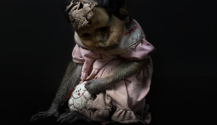 Masking Inhumanity: A Haunting View of Animal Slavery