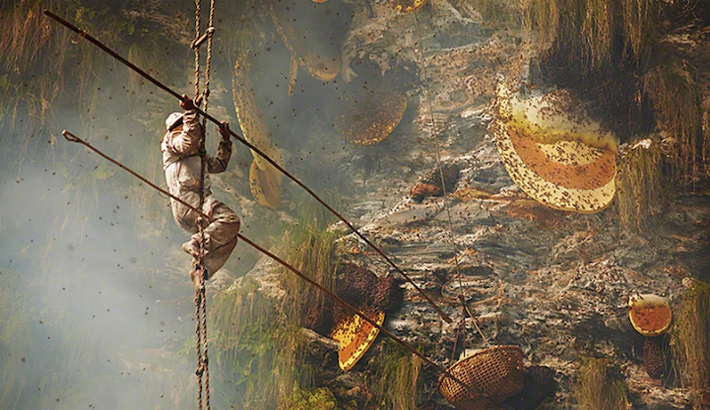 Andrew Newey's Striking Photographs of Traditional Honey Hunters in Nepal