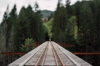 A Look at a Local Secret Gone Viral - Vance Creek Bridge