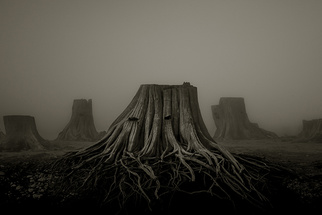Photographer Creates Haunting Reminder of Why We Need Earth Day