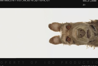 Wes Anderson Announces New Stop Motion Film, 'Isle of Dogs'