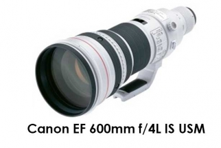 Canon EF 600mm f/4L IS USM
