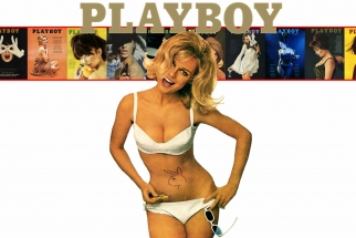 Every Playboy Centerfold Combined