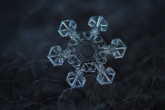 18 Unbelievable Images of Snowflakes
