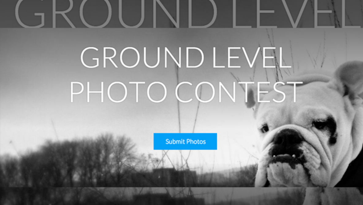 Weekly Contest: Enter for Free and Grab Yourself a Year of SmugMug Pro