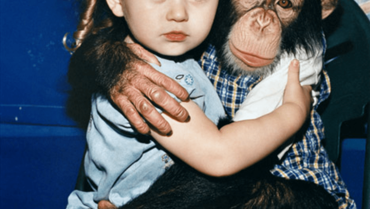 """A Photo Series 12 years in the Making: """"Amelia & the Animals"""""""