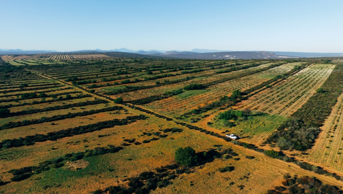 An Untapped Market: Agricultural Aerial Photography