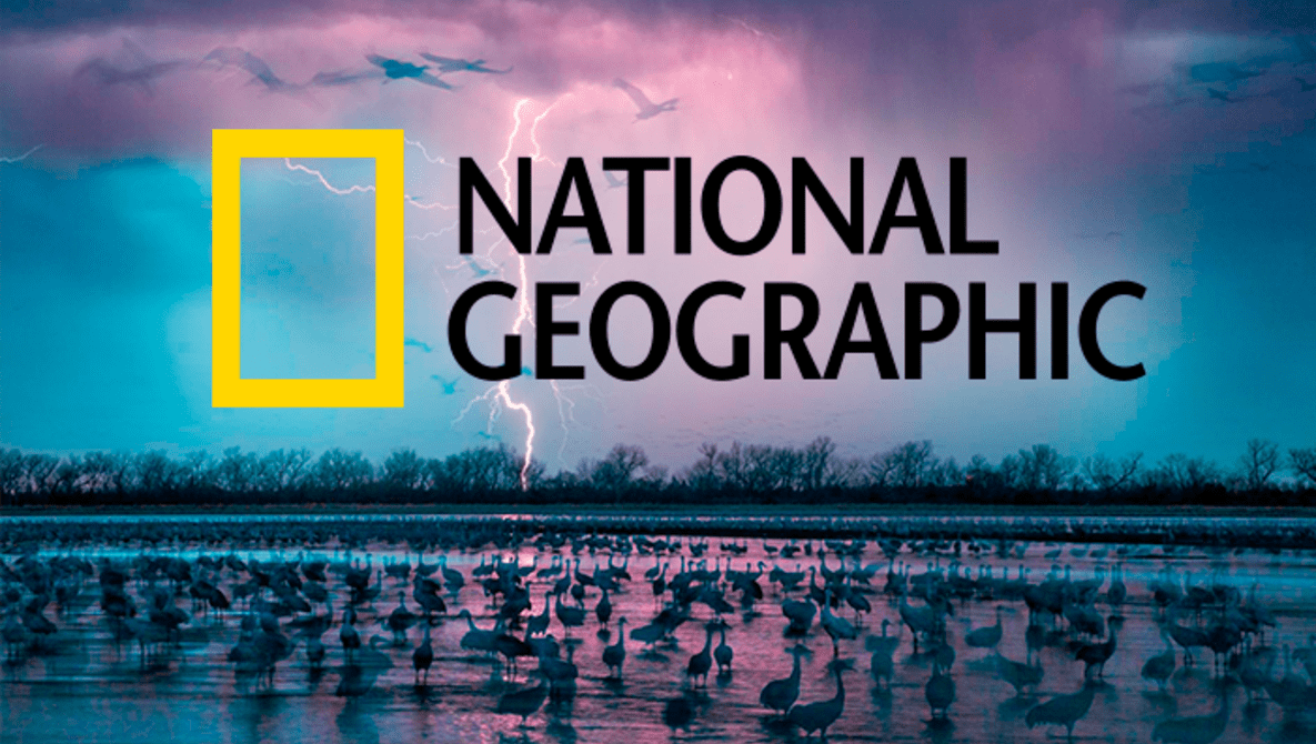National Geographic's Best 52 Photos of 2016