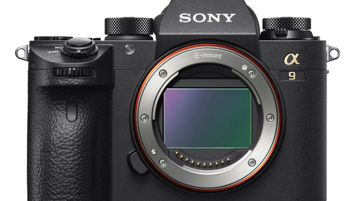 Sony a9 Dynamic Range Tested, Compared to Canon 1D X Mark II and Nikon D5