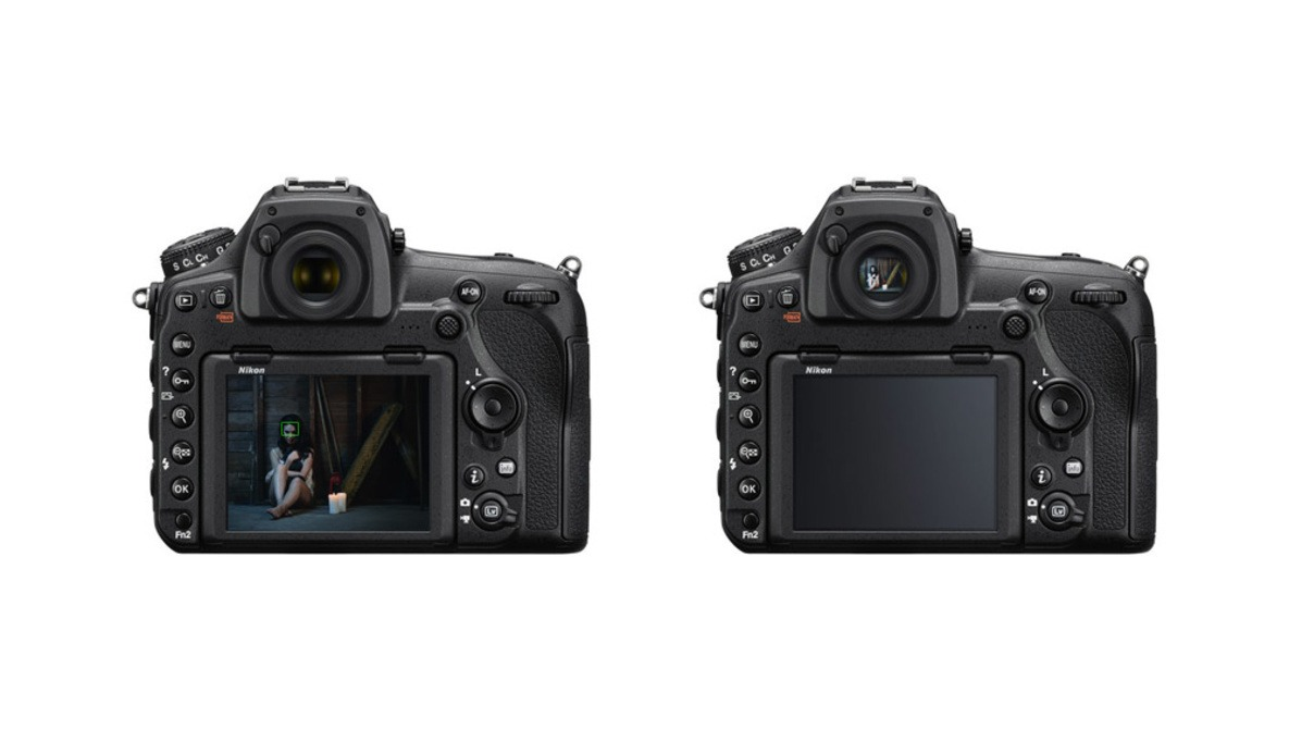 The Difference Between a DSLR's Viewfinder Autofocus and Live View Autofocus