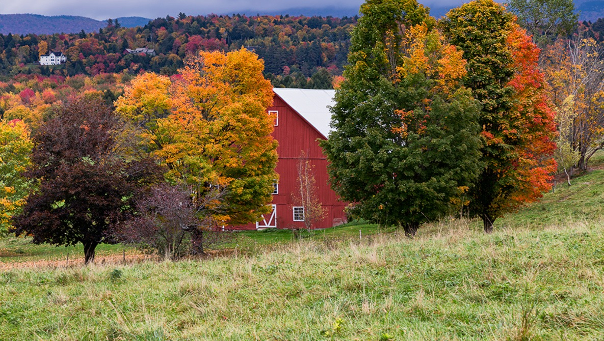 Three Tips for Photographing Fall Colors