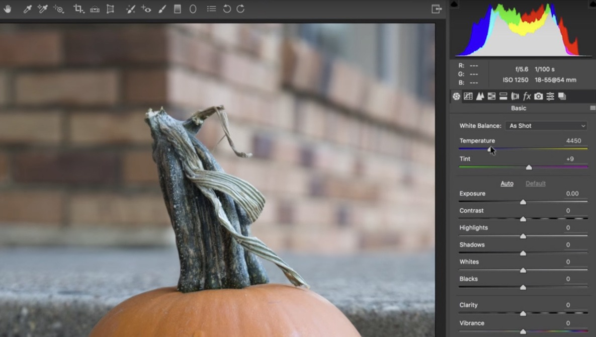 Capture One Vs. Lightroom: Ted Forbes Talks Raw