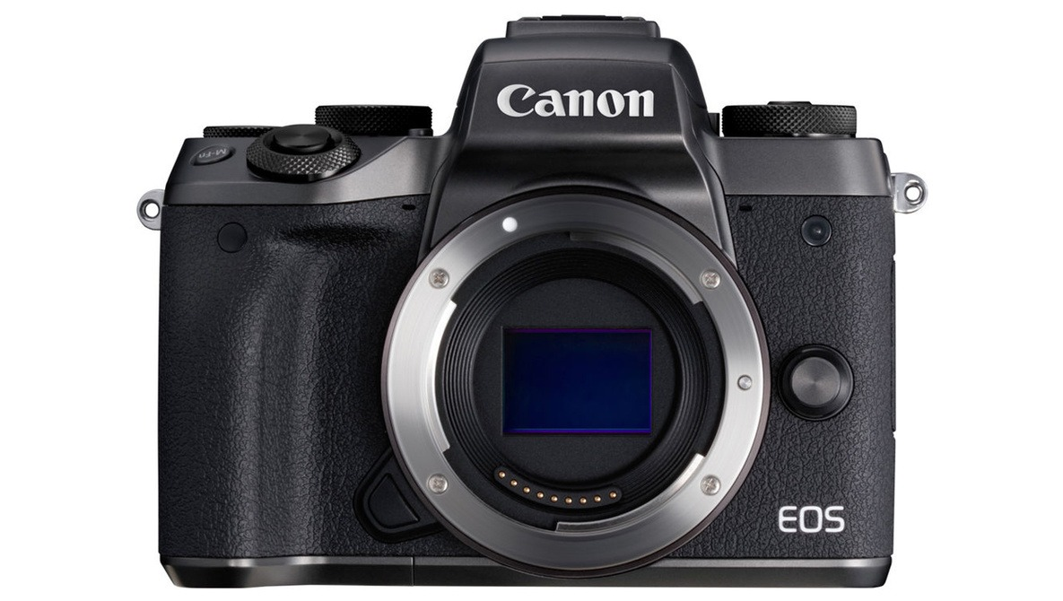 Believe It or Not, Canon Leads the Mirrorless Market in Japan
