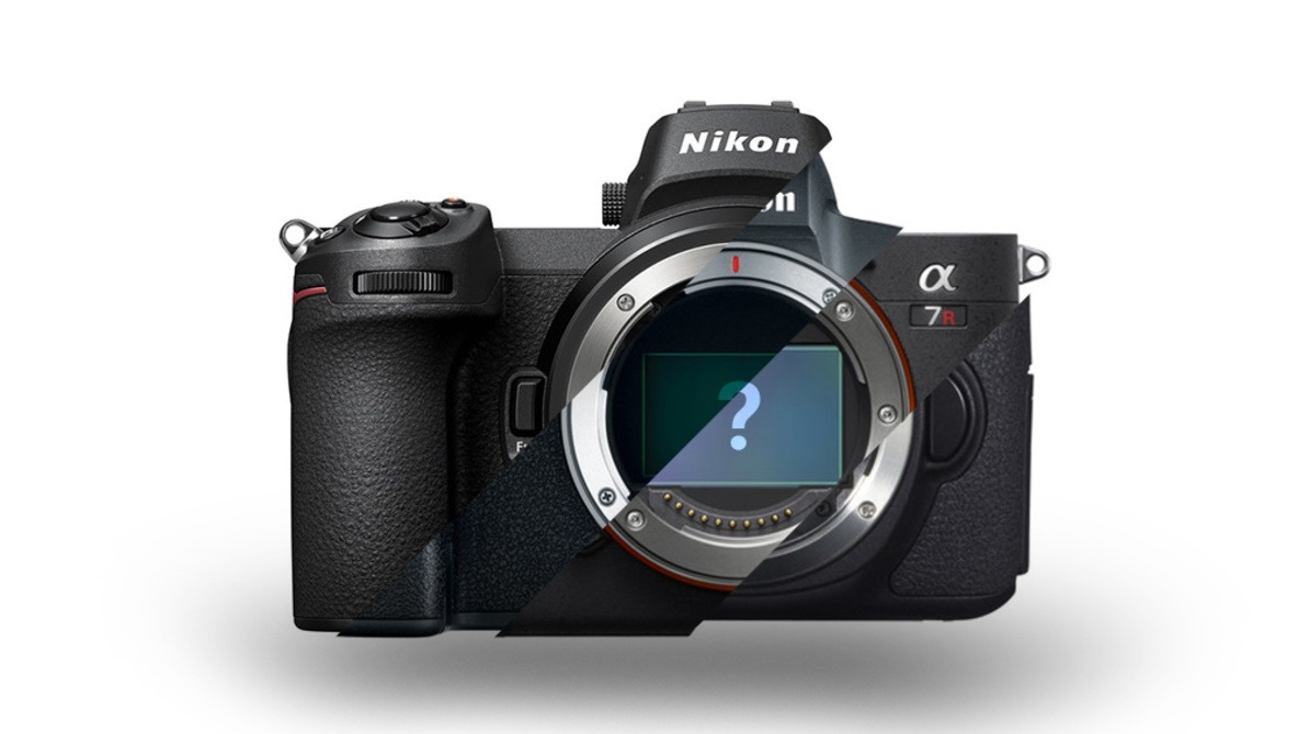 The Most Popular Cameras of 2018: How Do Canon's and Nikon's Mirrorless Compete?