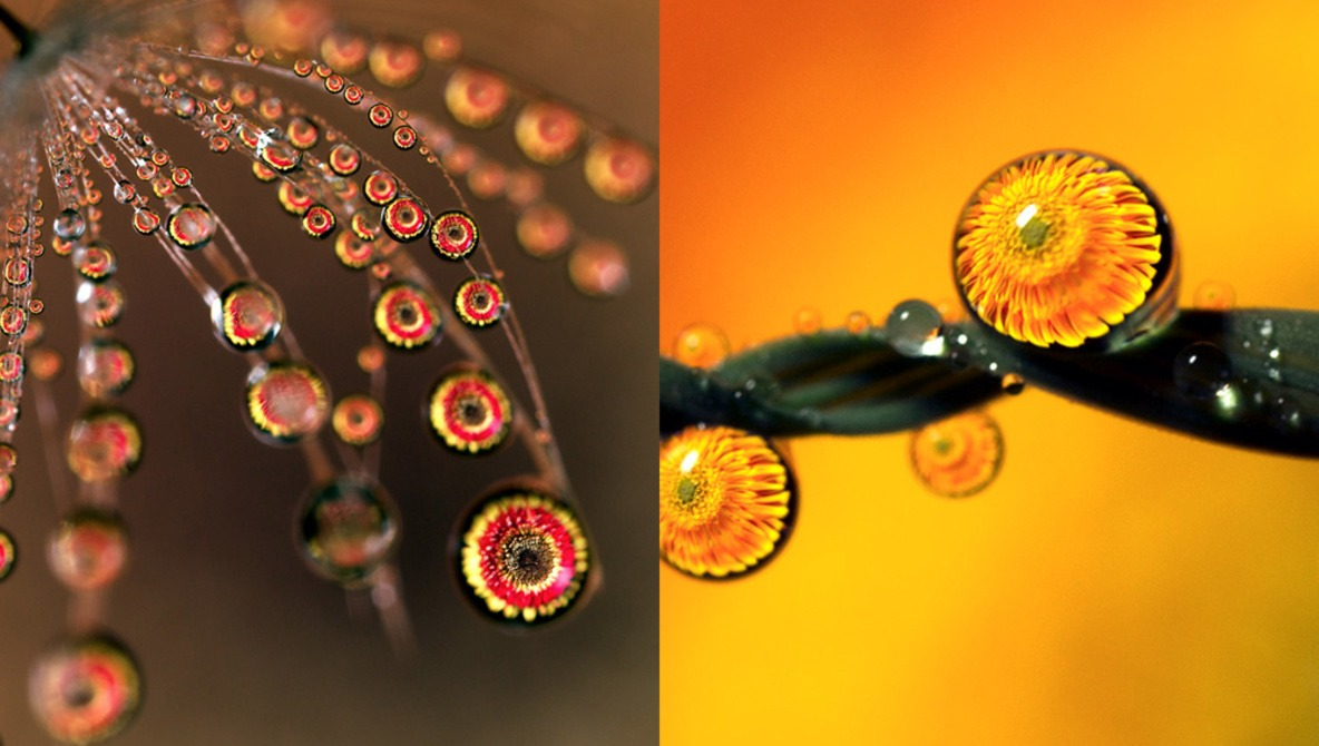 The Mesmerising Results of Shooting Macro Water Droplet Refractions