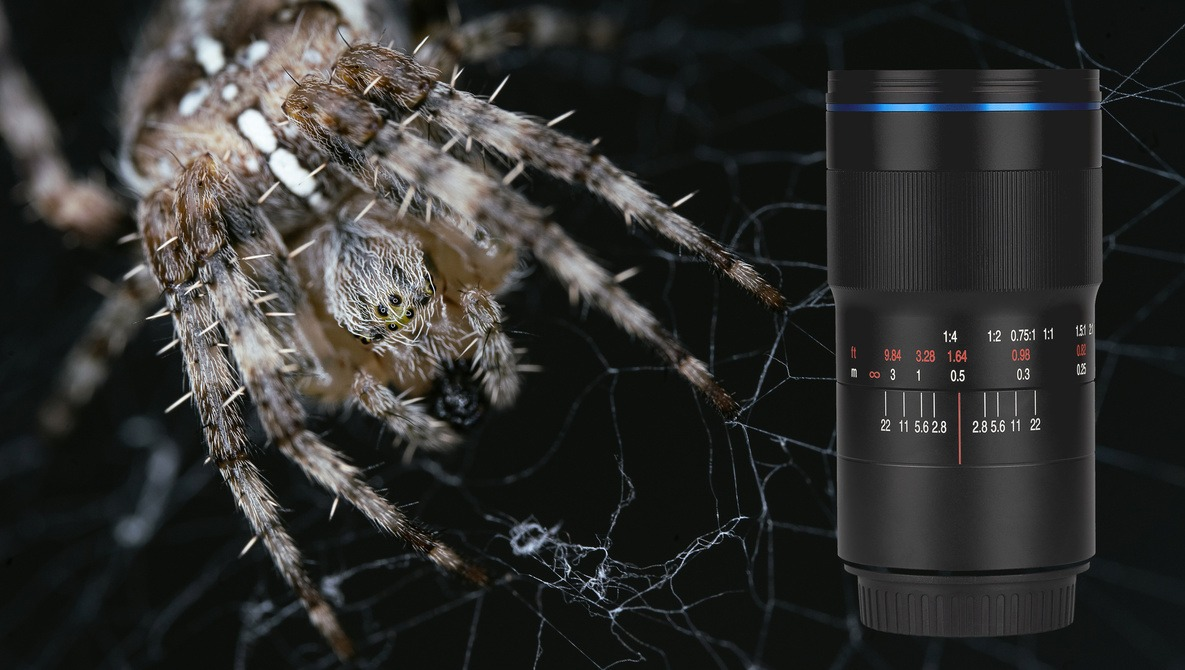 Fstoppers Reviews the Laowa 100mm f/2.8 2:1 Ultra Macro Lens |