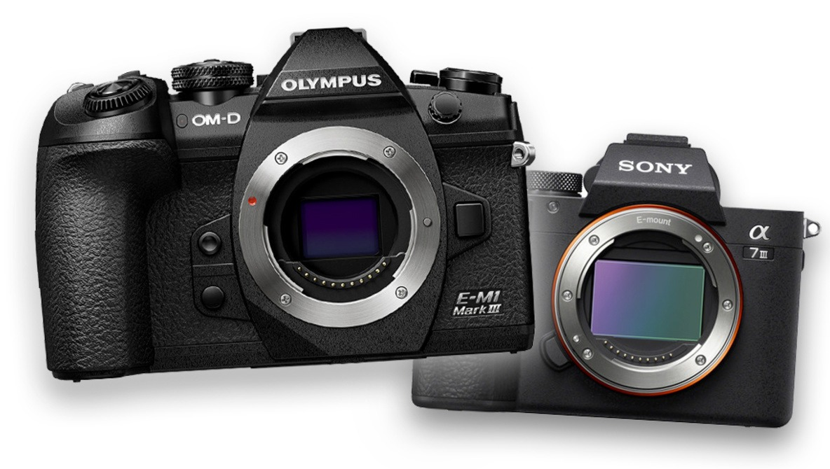 Would You Buy an Olympus O-MD E-M1 Mark III Instead of a Sony a7 III?