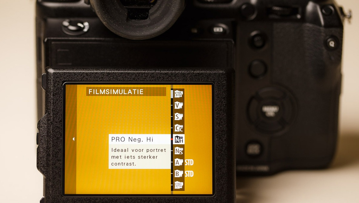 Consider Using a Flat Picture Profile When Shooting in Raw