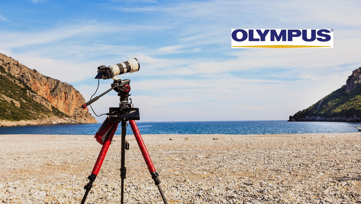 Are Canon's Rumored Super-Telephoto Lenses a Serious Threat to Olympus?