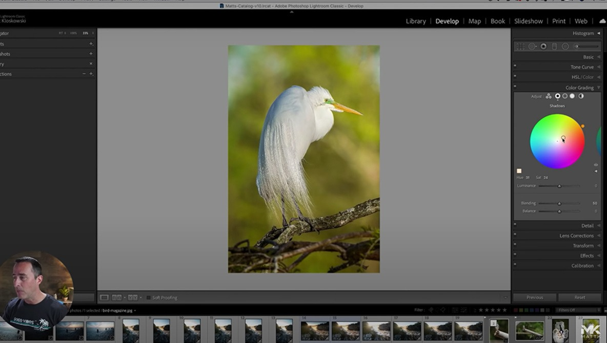 5 Helpful Tips for Working in Lightroom