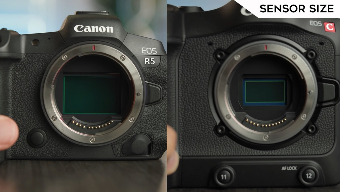 Canon R5 Versus Canon C70: Which Should You Buy for Video?