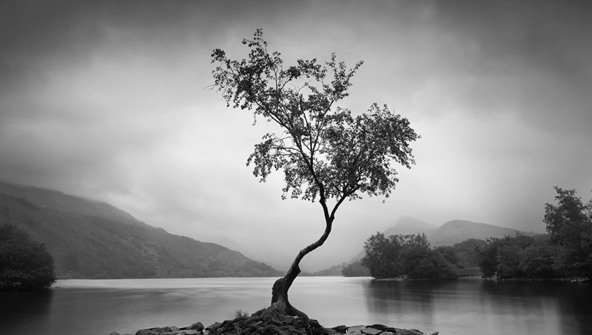 Creative Ideas for Landscape Photos in Bad Weather