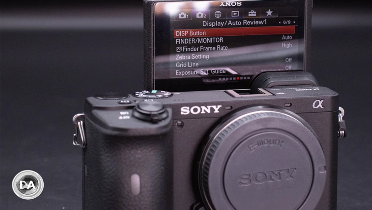A Review of the Sony a6600 Mirrorless Camera