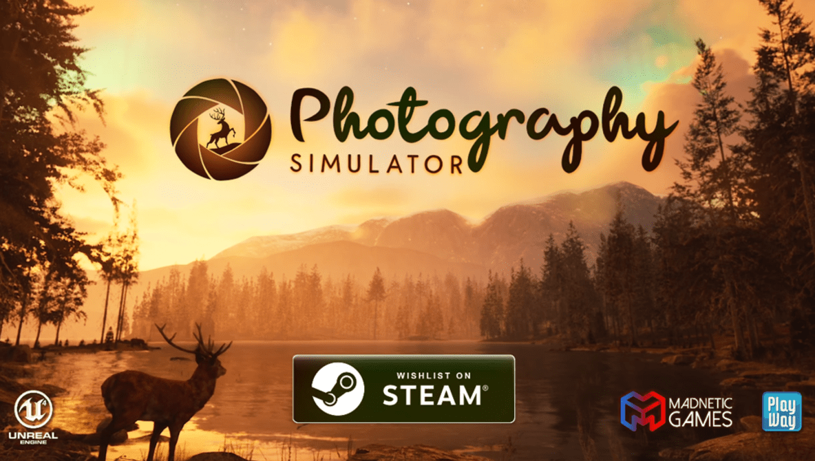 I Can't Wait for This Photography Simulator Video Game to Be Released