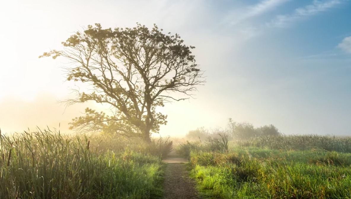 3 Skills That Will Improve Your Landscape Photography