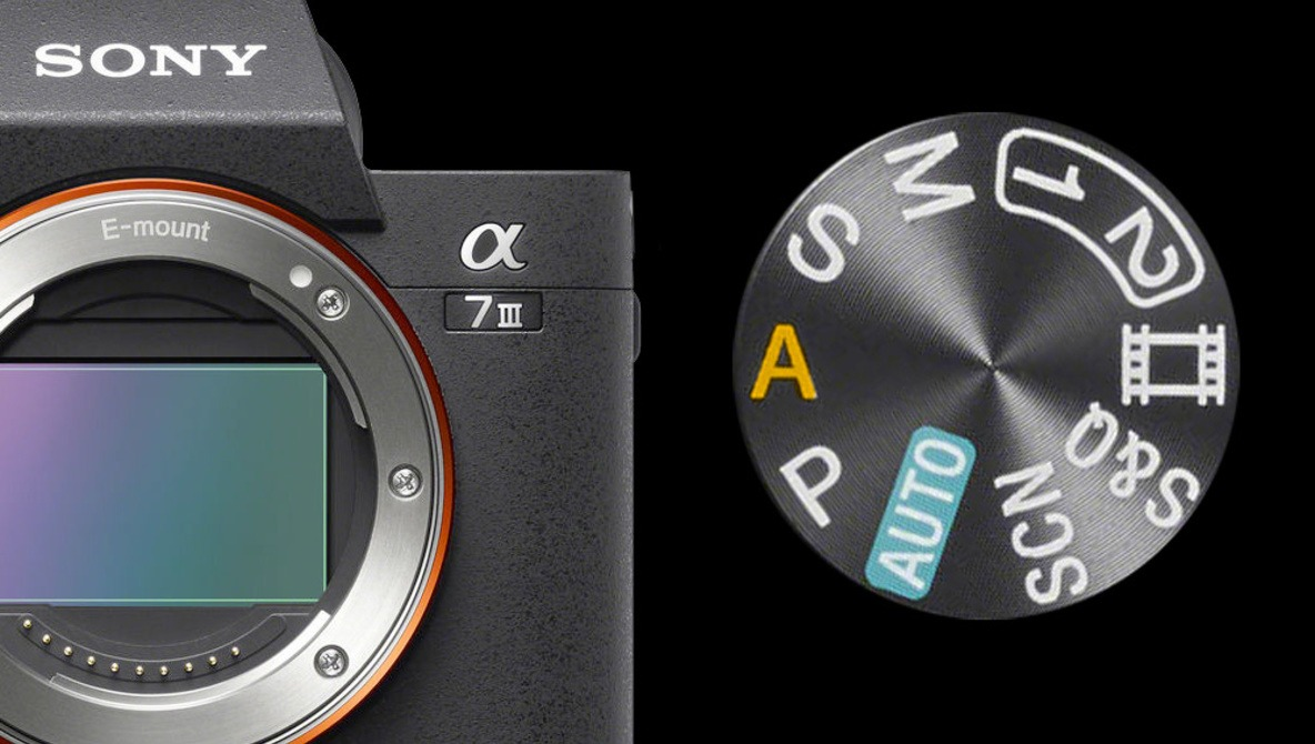 How to Make Photography Easy With Aperture Priority Mode