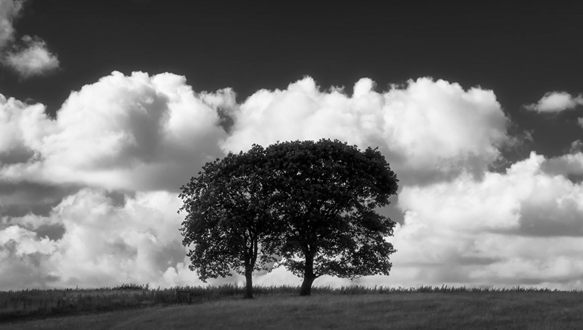 7 Helpful Tips for Better Black and White Landscape Images