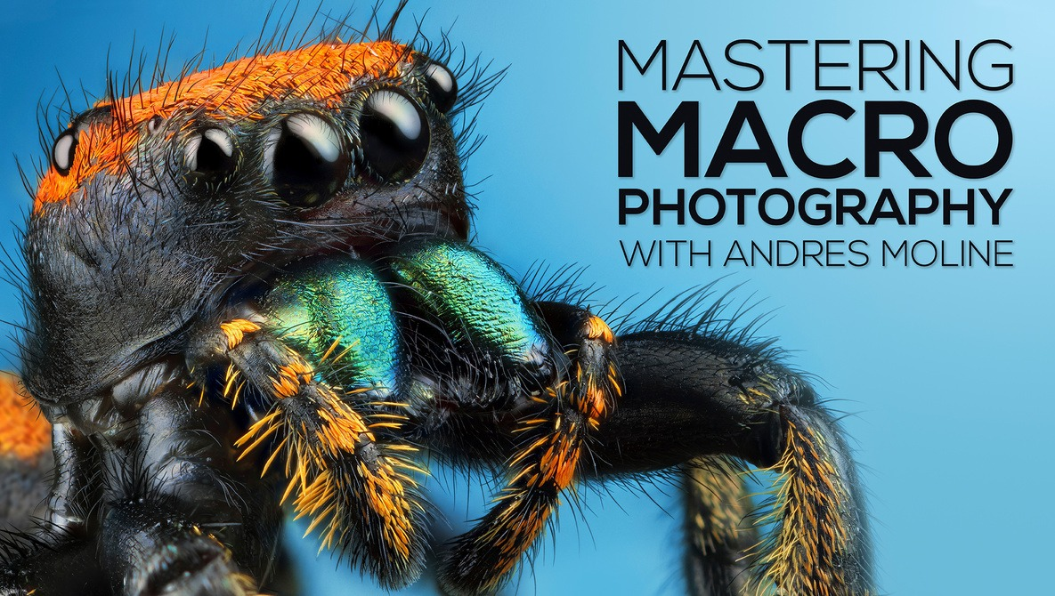 Mastering Macro Photography: The Complete Shooting and Editing Tutorial with Andres Moline